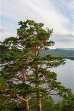 Preview iPhone wallpaper Kazakhstan, lake, pine trees, nature landscape