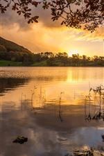 Lake, trees, sunset, nature
