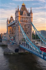 Londres, Tower Bridge, rio, carros, Reino Unido