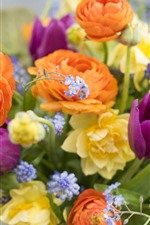 Preview iPhone wallpaper Many kinds flowers, colorful