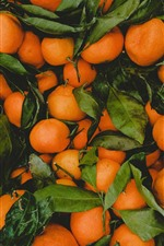 Preview iPhone wallpaper Many mandarins, fruit
