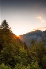 Preview iPhone wallpaper Mountains, alps, trees, morning, sunrise