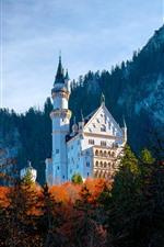 Preview iPhone wallpaper Neuschwanstein Castle, Bayern, Germany, autumn