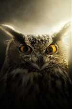 Preview iPhone wallpaper Owl, eyes, ears, backlight