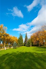 Preview iPhone wallpaper Park, lawn, trees, autumn, clouds, blue sky