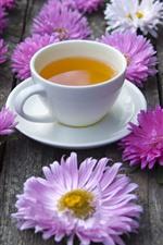 Flores de ásteres-de-rosa e brancas, uma xícara de chá