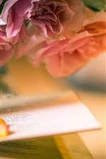 Preview iPhone wallpaper Pink roses, petals, book, hazy