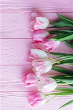 Preview iPhone wallpaper Pink tulips and pink background