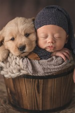 Preview iPhone wallpaper Puppy and baby sleep in bucket