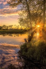 Preview iPhone wallpaper River, trees, grass, sunset, sun rays