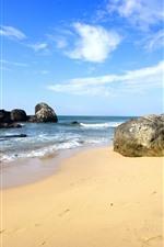 Mar, praia, pedras, tropical