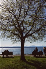 Preview iPhone wallpaper Sea, tree, bench, grass, people, sunshine