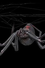 미리보기 iPhone 배경 화면 거미, 웹, 검정색 배경
