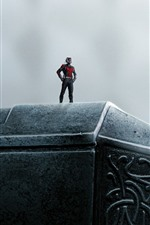 Preview iPhone wallpaper Superhero, Ant-man, hammer