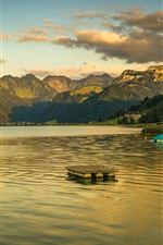 Switzerland, lake, mountains, trees, reeds, clouds, dusk