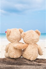 Preview iPhone wallpaper Teddy bear, back view, beach, sea