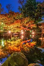 iPhone обои Токио, Огикубо, Япония, ночь, пруд, деревья, огни, парк