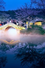 Preview iPhone wallpaper Travel, China, night, bridge, sakura, lake, fog