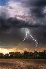 미리보기 iPhone 배경 화면 나무들, 들판들, 구름들, 번개, 폭풍우