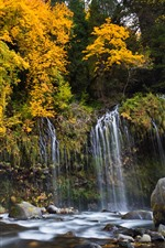 Preview iPhone wallpaper USA, California, Sacramento River, trees, stones, waterfall, autumn