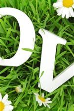 Vorschau des iPhone Hintergrundbilder Weiße Kamille, Liebe, Gras