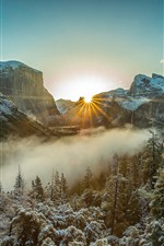 Winter, morning, fog, trees, snow, sun rays, mountains