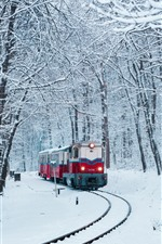 Preview iPhone wallpaper Winter, snow, train, railway, trees