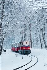 Winter, snow, train, railway, trees