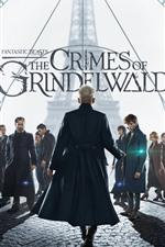 Vorschau des iPhone Hintergrundbilder Film 2018, Fantastic Beasts: Die Verbrechen von Grindelwald