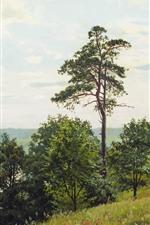 미리보기 iPhone 배경 화면 안드레이 게라시모프, 유화, 수목, 잔디, 호수