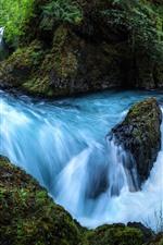 Beautiful nature landscape, waterfall, stream, rocks, trees