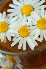 Preview iPhone wallpaper Daisy, white flowers, tea