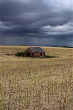 Field, house, thick clouds
