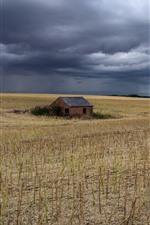 iPhone fondos de pantalla Campo, casa, nubes espesas