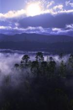 iPhone壁紙のプレビュー 霧、木、川、雲、夜明け