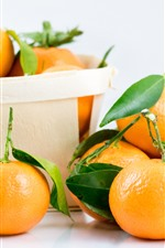 Fruit, fresh oranges, box