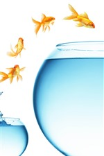Preview iPhone wallpaper Goldfish jumping, big and small glass fish tank, water