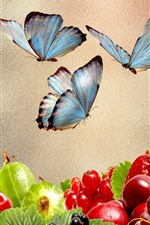 Grapes, berries, fruit, butterfly