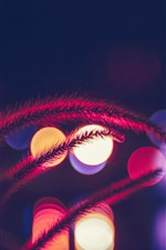 Preview iPhone wallpaper Grass, light circles, night, glare