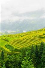 Preview iPhone wallpaper Guizhou terraces, beautiful scenery, China