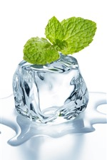 Preview iPhone wallpaper Ice cube, mint leaves, water, white background