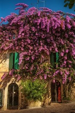 Preview iPhone wallpaper Italy, Lombardy, Sirmione, city, street, purple flowers