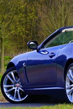 Preview iPhone wallpaper Jaguar blue convertible rear view