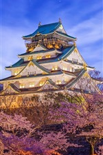 Preview iPhone wallpaper Japan, Osaka, Himeji Castle, sakura, lighting, night