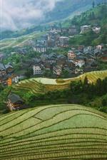 Longsheng Terrace, Guangxi, China, village, countryside, fog, morning