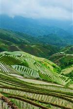 iPhone fondos de pantalla Terraza de Longsheng, campos de arroz, montañas, aldea, niebla, Guangxi, China