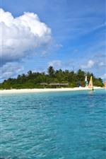 Maldivas, mar, barcos, palmeiras, nuvens, tropical