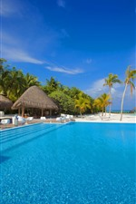 Preview iPhone wallpaper Maldives, swim pool, palm trees, chairs, tables
