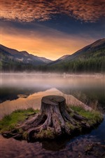 Preview iPhone wallpaper Mountains, lake, water reflection, stump, dusk
