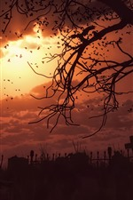 Preview iPhone wallpaper Night, darkness, cemetery, crows, terror, art picture